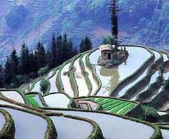 Trip To Shillong